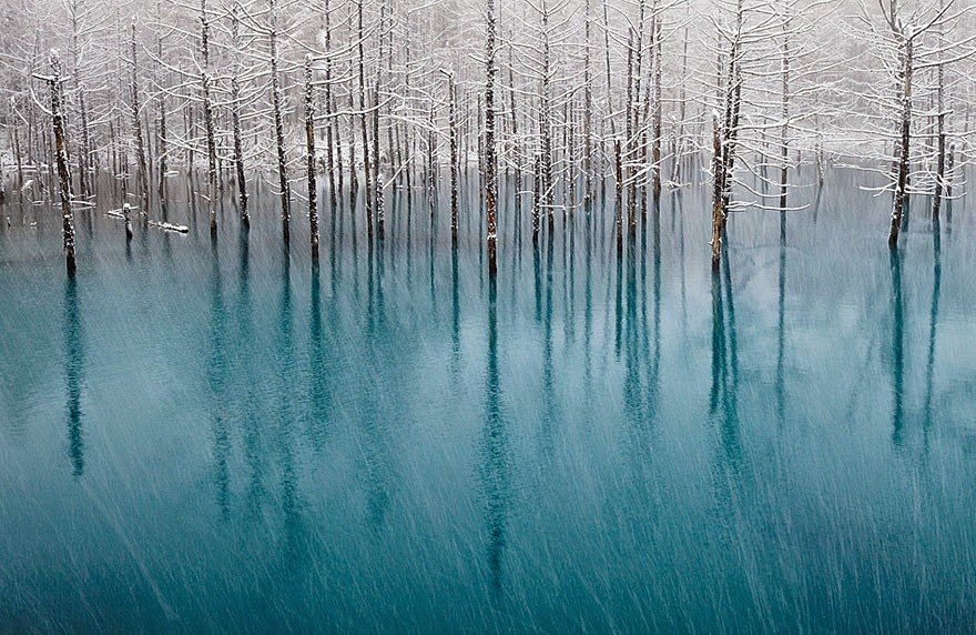 Blue Pond In Japan