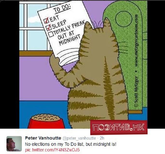 петер ван хауте твитер мачки