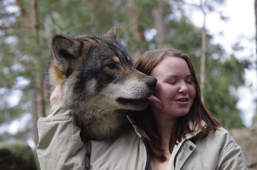 wolf_kiss_by_pschokid-d3e47s1