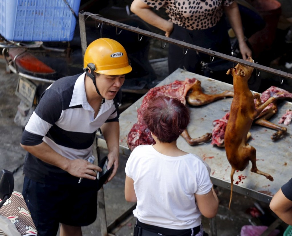 china-dog-meat-festival (5)