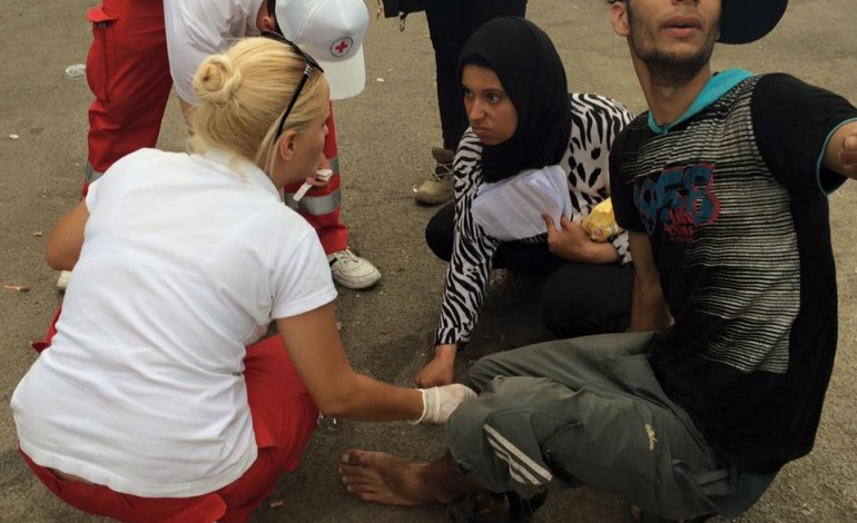 crven krst migranti
