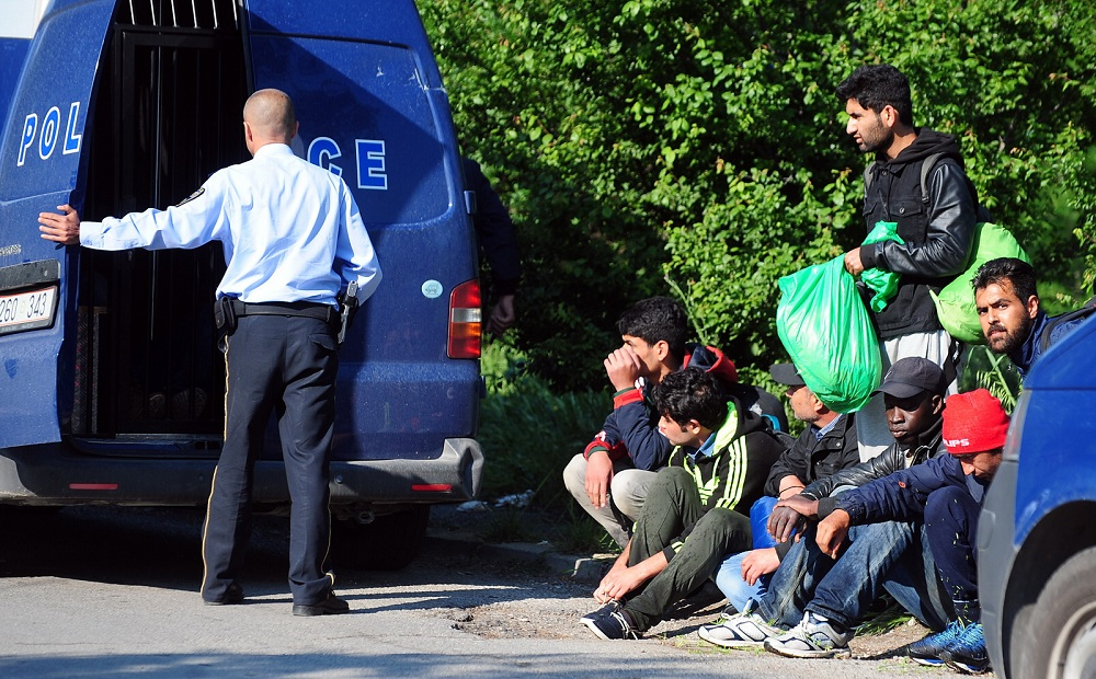 migranti sverc
