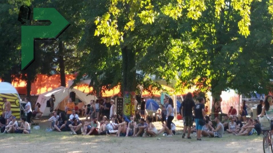 d festival (17) (1)