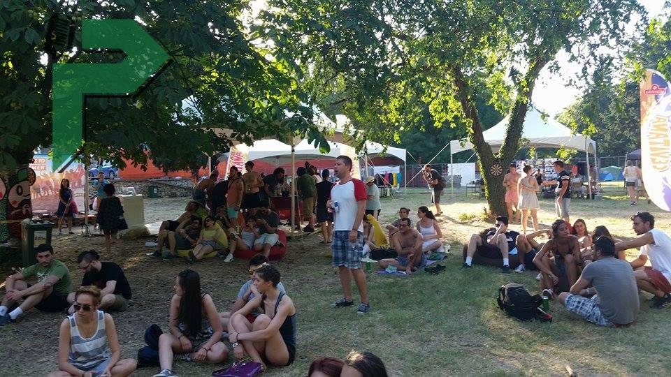 d festival (20) (1)