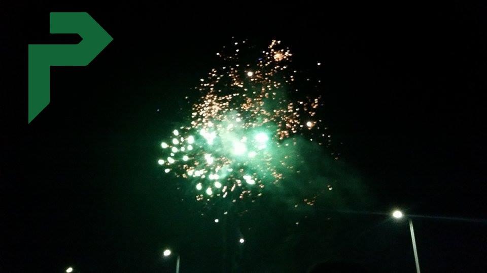 d festival (6) (1)