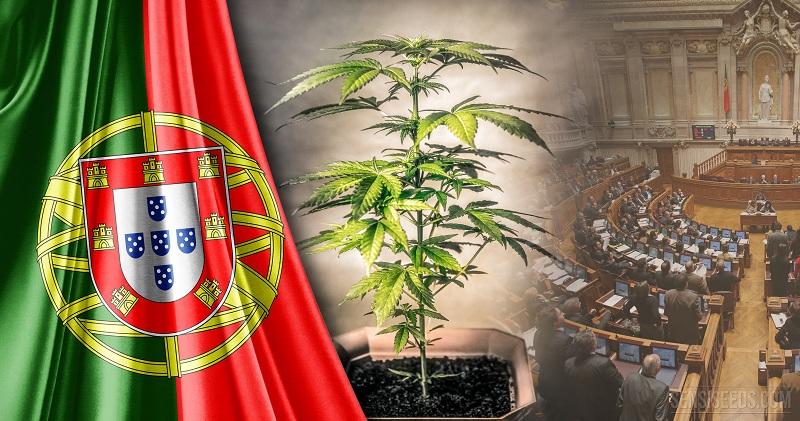 portugalija kanabis zakon