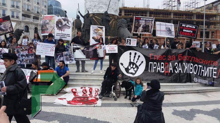 protest zivotni (4) (1)