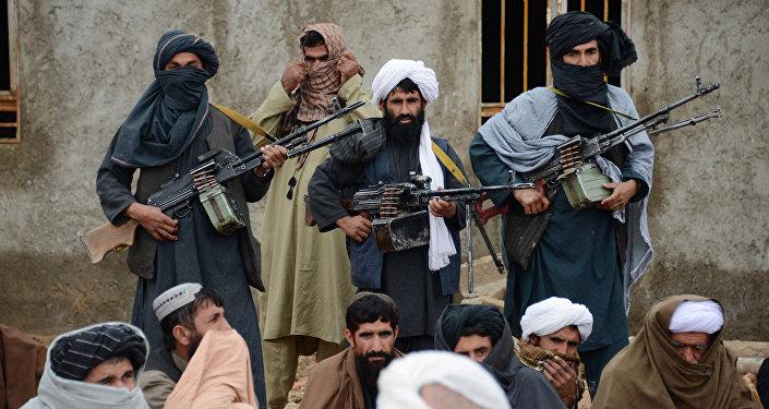 talibanci