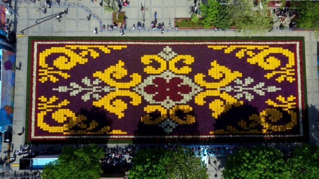 world-s-largest-tulip-carpet-in-istanbul_01460360156