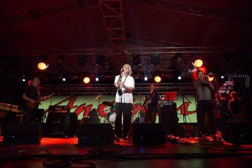 d-festival-520x347