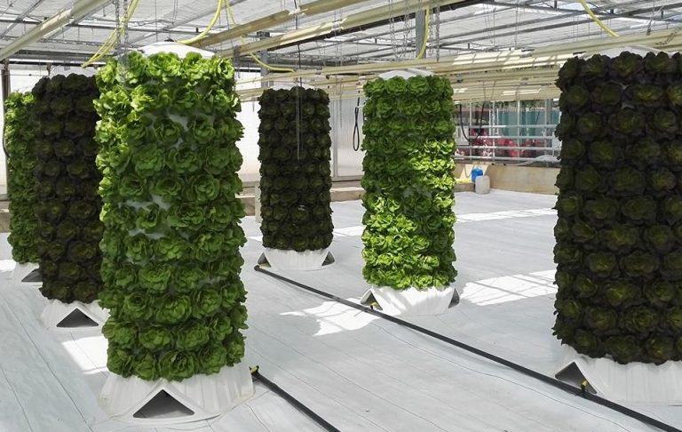 eko inovacija
